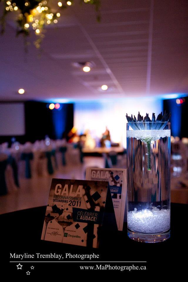 Gala reconnaissance Desjardins 2011